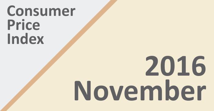 cpi-november